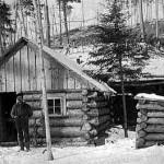 Minnesota_Gold_Rush_Miners__cabin_1894